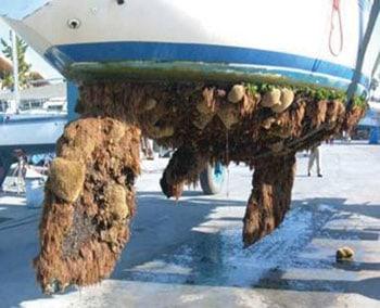 Fouled hull